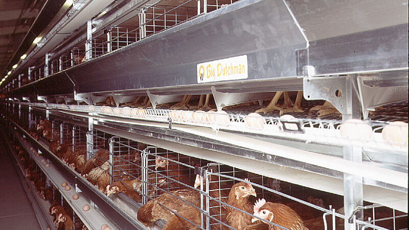 Produksi telur dengan UNIVENT