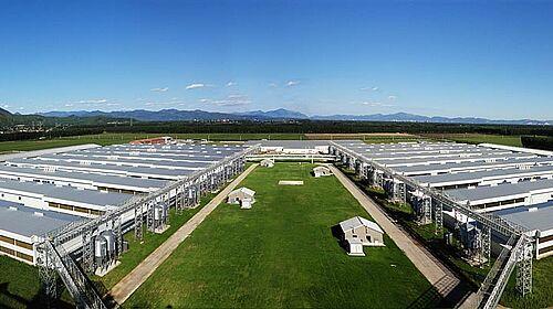 Foto diambil dari puncak pabrik pakan pemilik peternakan